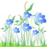 Blue floral garden. Illustration Stock Photography