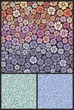 Blue Floral pattern Royalty Free Stock Image