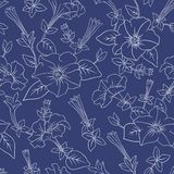 Blue floral seamless pattern Royalty Free Stock Photos