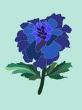 Blue flower. On the light-blue background Stock Image
