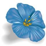 Blue Flower. 01 - High detailed illustration royalty free illustration