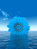 Blue_Flower Stock Image