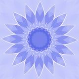 Blue Flower Royalty Free Stock Photos