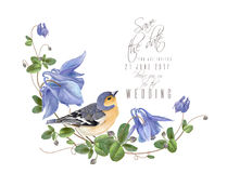 Blue flower bird composition Royalty Free Stock Photo