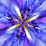 Blue Flower Center Collage Geometric Pattern Stock Image