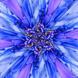 Blue Flower Center Collage Geometric Pattern Royalty Free Stock Photography
