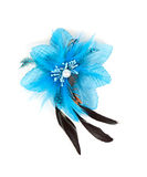Blue flower fabric with feathers Stock Image
