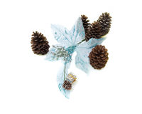 Blue flower fabric with pine cones Stock Photo