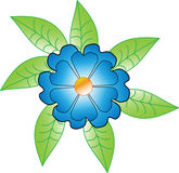 Blue flower with green leaves Royalty Free Stock Photography