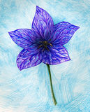 Blue flower Stock Photos
