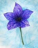 Blue flower stock photos