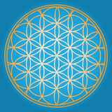 Blue Flower of life royalty free illustration