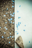 Blue Flower Petals Stock Images