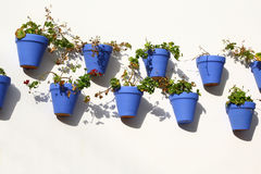 Blue flower pots hanging from a wall, Cordoba Stock Image