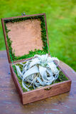 Blue flower with rings in beautiful wooden box Royalty Free Stock Images