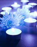 Blue flower and tea candles. Spa background Stock Images