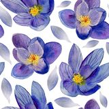 Blue flower. Watercolor painting. Beautiful watercolor flower stock photo
