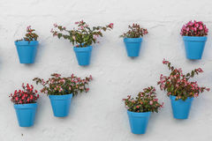 Blue flowerpot on a wall. Blue flowerpot with flowers on white wall in Mijas stock images