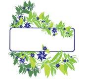 Blue flowers Stock Photos