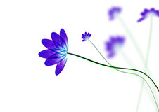 Blue flowers. Blue flower, on white background, computer generated vector illustration