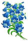 Blue flowers stock illustration