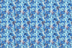Blue flowers background. Abstract background of blue colors, texture royalty free illustration