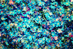 Blue Flowers Background. Forget-me-not Flower Royalty Free Stock Photography