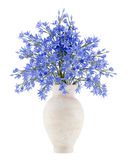 Blue flowers in ceramic vase isolated on white. Background. 3d illustration Royalty Free Stock Photography