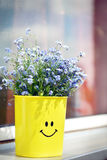 Blue flowers (forget me not) Royalty Free Stock Photos