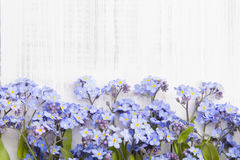 Blue flowers frame on white wooden background Royalty Free Stock Photography