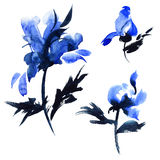 Blue flowers illustration Stock Photos