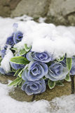 Flowers snowfall Stock Images