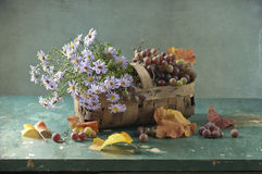 Blue flowers and vine. Still life with the small basket of vine and flowers stock photo