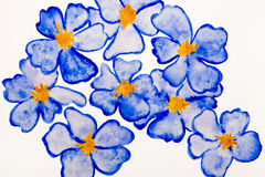 Blue flowers water color Stock Photography