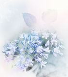 Blue Flowers Watercolor Royalty Free Stock Image