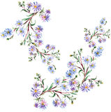 Blue flowers  , watercolor Stock Photos