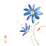 Beautiful summer blue flowers, watercolor illustra. Blue flowers on the white background Stock Image