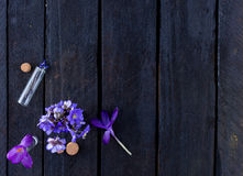 Blue flowers on wooden background Royalty Free Stock Image
