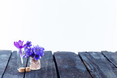 Blue flowers on wooden background Stock Photos