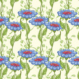 Blue flowers. On the yellow background royalty free illustration