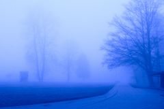 Blue fog Stock Photos