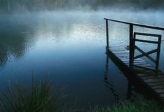 Blue  foggy sunrises. One foggy blue  sunrises on pond Royalty Free Stock Photography