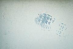 Blue Footprint. Blue paint footprint on light blue background Stock Photos