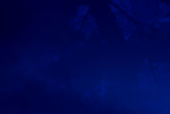 Blue forest abstract background Royalty Free Stock Images