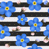 Blue forget me not flowers on the striped background. seamless pattern with summer flowers. Royalty Free Stock Photos