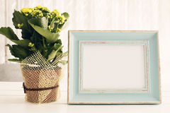 Blue Frame Mock Up, Digital MockUp, Display Mockup, Sea Styled Stock Photography Mockup, Colorful Desktop Mock Up. Yellow kalancho. E. White background, empty Royalty Free Stock Photo