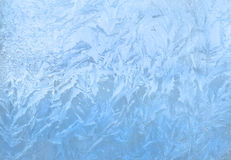 Blue freeze ornaments. On the window stock images