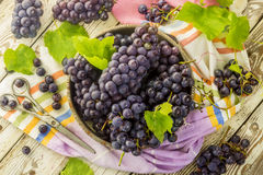 Blue fresh grapes in old metal bowl Royalty Free Stock Images