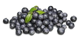 Fresh Ripe Blueberries on white background. Blue fresh ripe blueberries close up color white Stock Photos