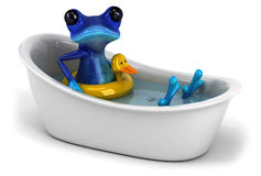 Blue frog Stock Image